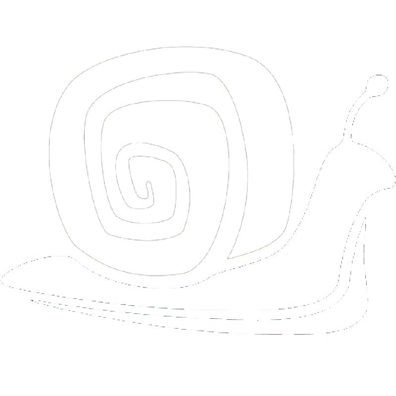 Kokleo